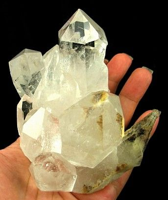 Regal Chlorite Included Bright Clear Quartz Cluster :: Image is of piece for sale.