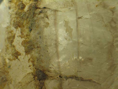 Enchanting Smoky Phantom Enhydro Elestial :: Image is of piece for sale.