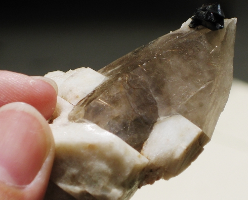 Smoky Quartz Tabby Crystal w/Aegerine and Feldspar :: Image is of piece for sale.