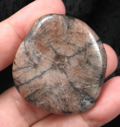 Fairy Cross - Chiastolite Freeform :: Image is of piece for sale.
