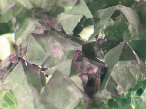 Standing Fluorite Cluster :: Image is of piece for sale.